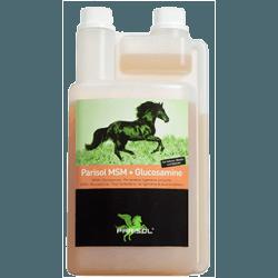 Parisol MSM und Glucosamine – Ergänzungfuttermittel für Pferde - eine zusätzliche Versorgung von Gelenken, Sehnen, Bändern, Knorpel, Haut, Hufe, Haare, Stoffwechsel