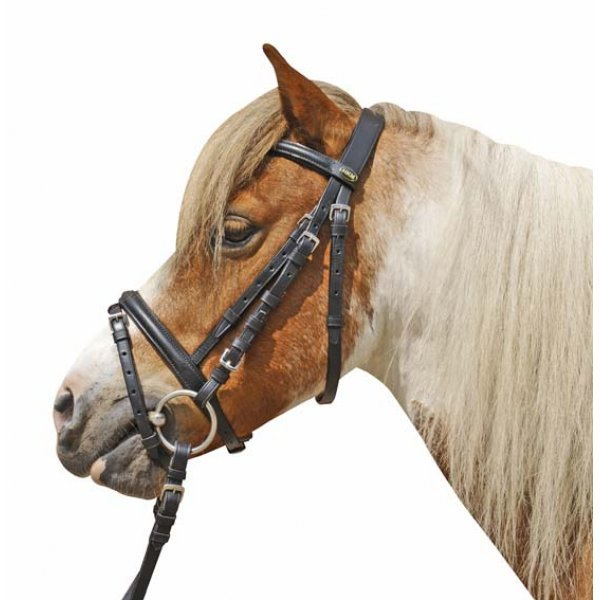 HKM Wassertrense, Pony, Stangen-Durchmesser 12 mm, kleine Maulbreite, kleine Ringe 45 mm, Edelstahl, rostfrei,