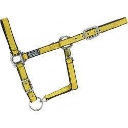 USG - Halfter gelb - braun, silberfb. Beschläge, Stallhalfter, Weidehalfter